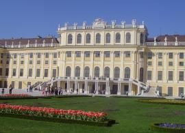 Viena